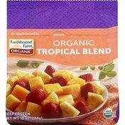 Earthbound Farms Tropical Blend, Organic