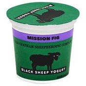 Old Chatham Sheepherding Company Yogurt, Black Sheep, Mission Fig