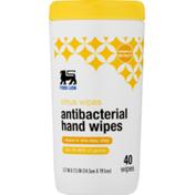 Food Lion Hand Wipes, Antibacterial, Citrus, Jar