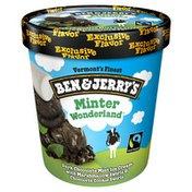 Ben & Jerry's Ice Cream Minter Wonderland™