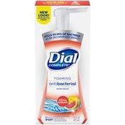 Dial Complete Antibacterial Foaming Hand Wash, Citrus Sunburst