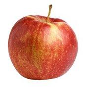 Northern Spy Apple Bag