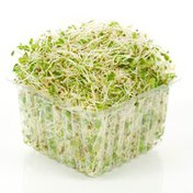 Alfalfa Sprouts Package