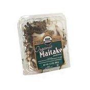 Philips Gourmet Organic Maitake Mushrooms