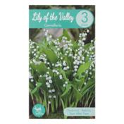Garden State Bulb Company Lily of the Valley Convallaria