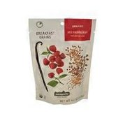 Patagonia Provisions Red Raspberry Oatmeal