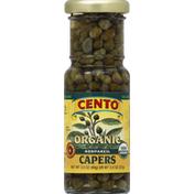 Cento Capers, Organic, Nonpareil