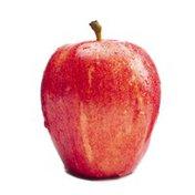 Royal Gala Apple Package