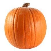 Jumbo Pumpkin Box