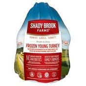 Shady Brook Farms Frozen Basted Turkey, Price Limit 1