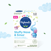 Hyland's 4 Kids Stuffy Nose & Sinus Cold and Allergy Medicine for Children Ages 2+