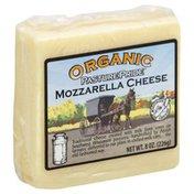 Pasture Pride Cheese, Mozzarella