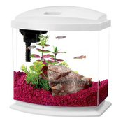 Aqueon 2.5 Gallon White MiniBow Aquarium Kit with LED Desk Lights