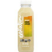 Evolution Fresh Organic Ginger Limeade Cold-Pressed Fruit Juice Drink