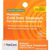 TopCare Maximum Strength Medicated Cold Sore Treatment Camphor 10.80%, Phenol 4.70% Pain Reliever & Antiseptic Gel