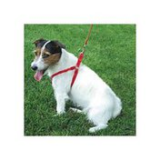 Coastal Pet Red Extra Small Comfortable & Soft Adjustable Dog Harness