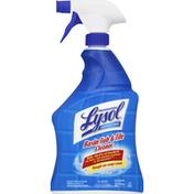 Lysol Basin Tub & Tile Cleaner, Disinfectant