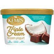 Kemps Triple Cream Coconut Fudge Frozen Yogurt