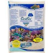 Carib Sea Arag-Alive! Live Aragonite Reef Sand Bahamas Oolite