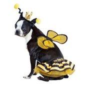 Medium Queen Bee Halloween Costume