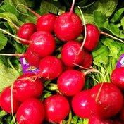Organic - Radishes