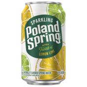 Poland Spring Lemon Lime Sparkling Water