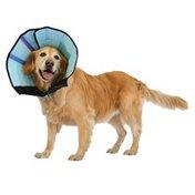 Medium Caring Dog Collar