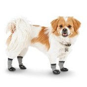 Good2 Go Medium Grey & Black Dip Socks for Dogs