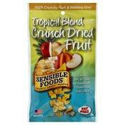Sensible Foods Crunch Dried Fruit, Tropical Blend