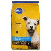 Pedigree Dog Food, Small Crunchy Bites