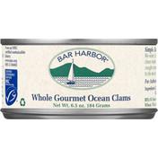 Bar Harbor Ocean Clams, Gourmet, Whole
