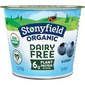 Stonyfield Organic Dairy Free Blueberry Soy Yogurt