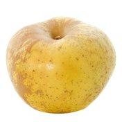 Golden Russet (Bertanne) Apple