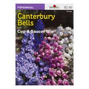 Burpee Canterbury Bells Cup & Saucer Mix