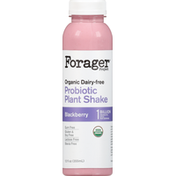 Forager Project Probiotic Plant Shake, Organic, Dairy-Free, Blackberry