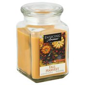 Enticing Aromas Candle, Scented, Fall Harvest