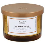 Paddywax Candle, Soy Wax, 3-Wick, Pumpkin Spice