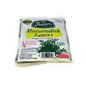 Tropics Malunggay Horseradish Leaves