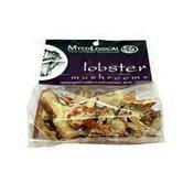 Myco Logical Lobster Mushrooms