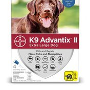 Bayer Pet Insect Treatment for Dogs  XL