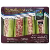Colorful Harvest Sweet Corn, Naturally Red, Ruby Jewel