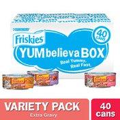 Purina Friskies Gravy Wet Cat Food Variety Pack, YUMbelievaBOX YUM-azing Extra Gravy Chunky