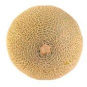 Organic Summer Kiss Melon