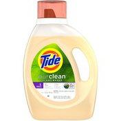 Tide Plant-based Liquid Laundry Detergent Honey Lavender