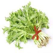 Organic Green Escarole Bunch