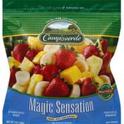 Campoverde Magic Sensation