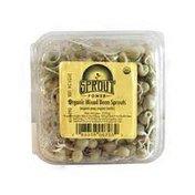 Sungrown Crunchy Bean Sprouts