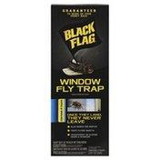 Black Flag Fly Trap, Window