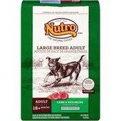 NUTRO Large Breed Adult Lamb & Rice Recipe Dog Food