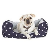 """Harmony 24"""" x 18"""" Small Polka Dot Box Dog Bed"""